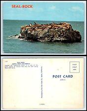 CALIFORNIA Postcard - Santa Cruz, Seal Rock P46
