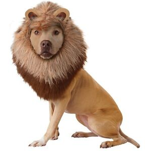 Animal Planet Lion Dog Pet Costume