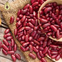 Organic Red Kidney Beans / 500g - 4kg / Premium Quality / Free P&P / Lovocado