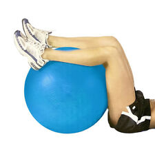 Exercise Fitness 65cm Fit Ball/Inflatable/Pilates/Yoga/Crossfit/Gym w/Pump Blue