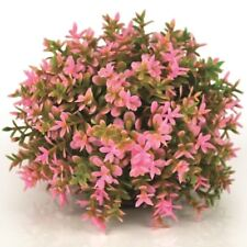 biOrb Aquarium Dekoration Deko-Pflanze künstlicher Blumenball pink