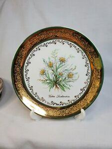 """Gorgeous Wide Gold Rim Porcelain 10"""" Dinner Plate Liechtenstein Schloss Vaduz"""