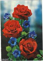 Fiori - cpsm - Rose (G5730)