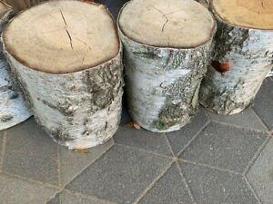 XXL Baumstamm Natur Basteln Birkenholz Birkenstamm Birke Drechseln Stamm Holz