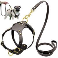 No Pull Genuine Leather Dog Harness Lead Set Samoyed French Bulldog Walking Lead