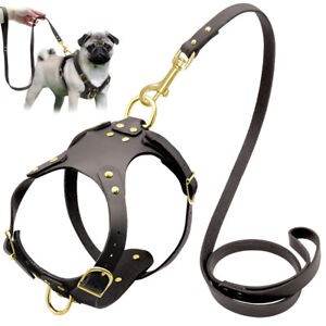 No Pull Genuine Leather Dog Harness Lead Set Samoyed French Bulldog Walking Lead