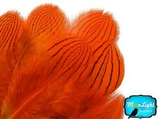 1 Dozen Orange Silver Pheasant Plumage Barred Feathers Fly Tying Jewelry Costume