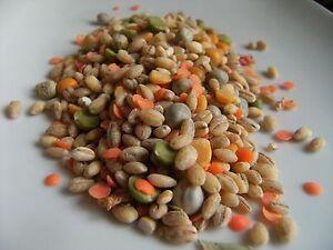 Soup Mix Broth Whole Seeds (Haleem Mix) Free UK P&P 100g-1kg
