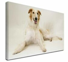 More details for borzoi dog x-large 30