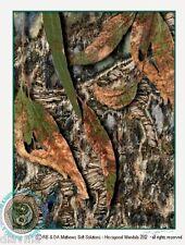© ART Aussie Bush Dreaming Abstract Nature Landscape Original Artist print by Di