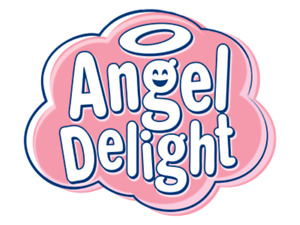Angel Delight All Variety's in I Packs I Pots I Kits - Free Postage + Discounts