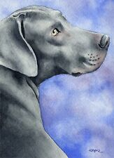 Weimaraner Watercolor Dog 8 x 10 Art Print Signed by Artist Djr