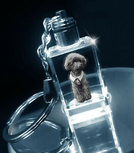 Wedding Gift - Unique Gift Ideas - Personalised Crystal Keyring - LED Lighted