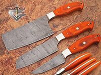 CUSTOM MADE DAMASCUS BLADE KITCHEN KNIFE 3 Pc's SET DP-1047-3