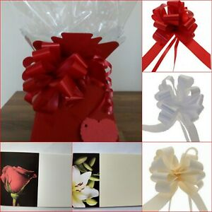 LIVING VASE FLOWER BOX CELLOPHANE GIFT WRAP CHRISTMAS HAND TIED BOX BOUQUET