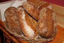 Backseminar Seminar Ramster Holzbackofen Brotbackofen Backen Brotbackseminar