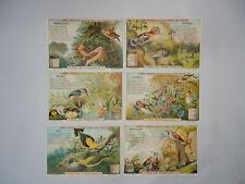 """Liebig Trade Cards - """"In Birdland"""" - Full Set of 6 - German - VGC"""
