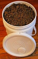 100% Organic Horse *DRY* Manure Compost 5 gallon bucket packed & stuffed full !