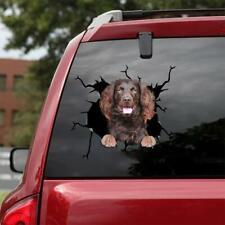 Boykin Spaniel Dog Sticker 3D Car Window Broken Glass Animal Magnet 12x12 in