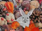 """ACEO Original """"Autumn Surprise - Rabbit"""" Collage & Painting, Hélène Howse"""