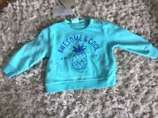 Zara Awesome And Cool Pineapple Sweatshirt 6-9 Months Bnwt