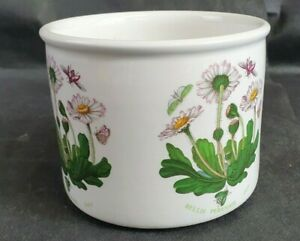 """Vintage Portmeirion Botanic Garden Bellis (Daisy) Plant Pot Holder 5"""" diameter"""