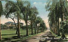 Hawaii, HI, Honolulu, Oahu College Grounds 1915 Postcard