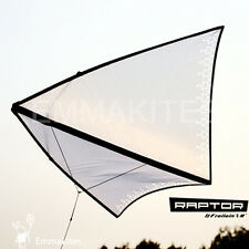 """41"""" Zero Wind Circling Single Line Delta Kite with Tail and Flying Line RTF"""
