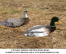 Sillosocks 3-D Mallard Sentry Duck Windsock Decoys 1dz +DVD by Sillosock Decoys