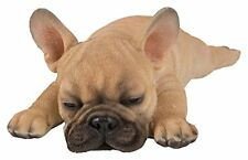 Vivid Arts- Sleeping Pet Pals- French Golden Bulldog Pup