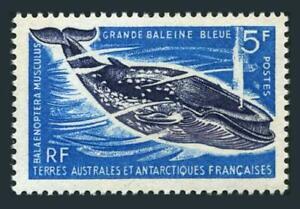 FSAT 25,MNH.Michel 36. Great Blue Whale,1966.