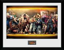 Street Fighter Characters - Collector Print (Neuf)
