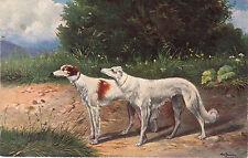 Antique Borzoi Russian Wolfhound Postcard German American Novelty Art Series