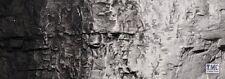 C1220 Woodland Scenics Black Terrain Paint 4 Oz