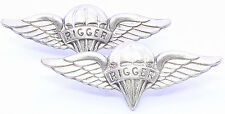 Airborne Rigger Jump Wing Badge Lot Insignia US Army Parachute Pin Pair