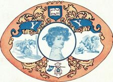 C.1910 Yale University Football Team Mascot Pennants Postcard P50