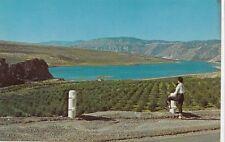 Columbia River Apple Orchard, near Chelan & Wenatchee, Washington, Postcard
