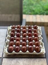 Poultry Hatching Eggs for sale   eBay