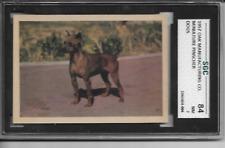 1957 Oak Manufacturing Co. Miniature Pinscher Dogs Sgc Nm 7