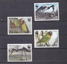 Zambia 1996 - MNH - Vogels / Birds  -  (WWF/WNF)