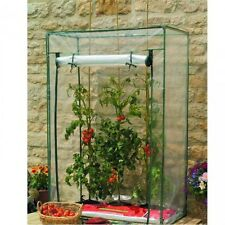 Tomato Greenhouse Garden Plants Cold Frame Protection Small Outdoor Green House