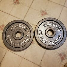2 25 Lb Cast Iron Weight Plates For Bar Gray Olympics Lifting Workout Equipment