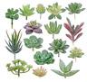 16× Künstlich Miniatur Sukkulenten Pflanzen Kunstpflanzen Beflockt Kaktus Dekor