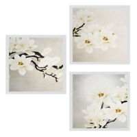 Art Flower Modern Pictures Wall Oil Painting Canvas Home Decor 40x40cm