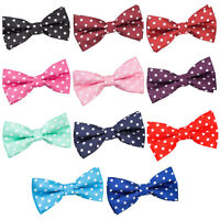 DQT Premium Woven Jacquard Polka Dot Classic Adjustable Pre-Tied Men's Bow Tie