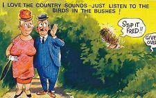 POSTCARD COMIC  BAMFORTH  COMIC  Series  No  2288   Country   Sounds