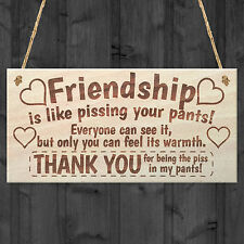 Friendship Sign Best Friend Plaque Gift Shabby Chic Heart Thank You Read Me