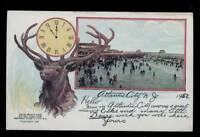 ATLANTIC CITY NEW JERSEY POSTCARD BEACH SCENE WITH LARGE ELK