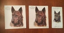 3 Vintage British Cigarette Trading Cards Scottish Terrier Scottie