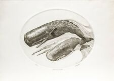 J. D. Mayhew Limited Edition Engraving - Sperm Whales